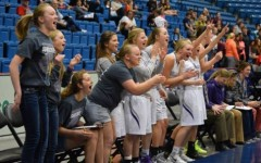 Bulldogs earn way to girls basketball final