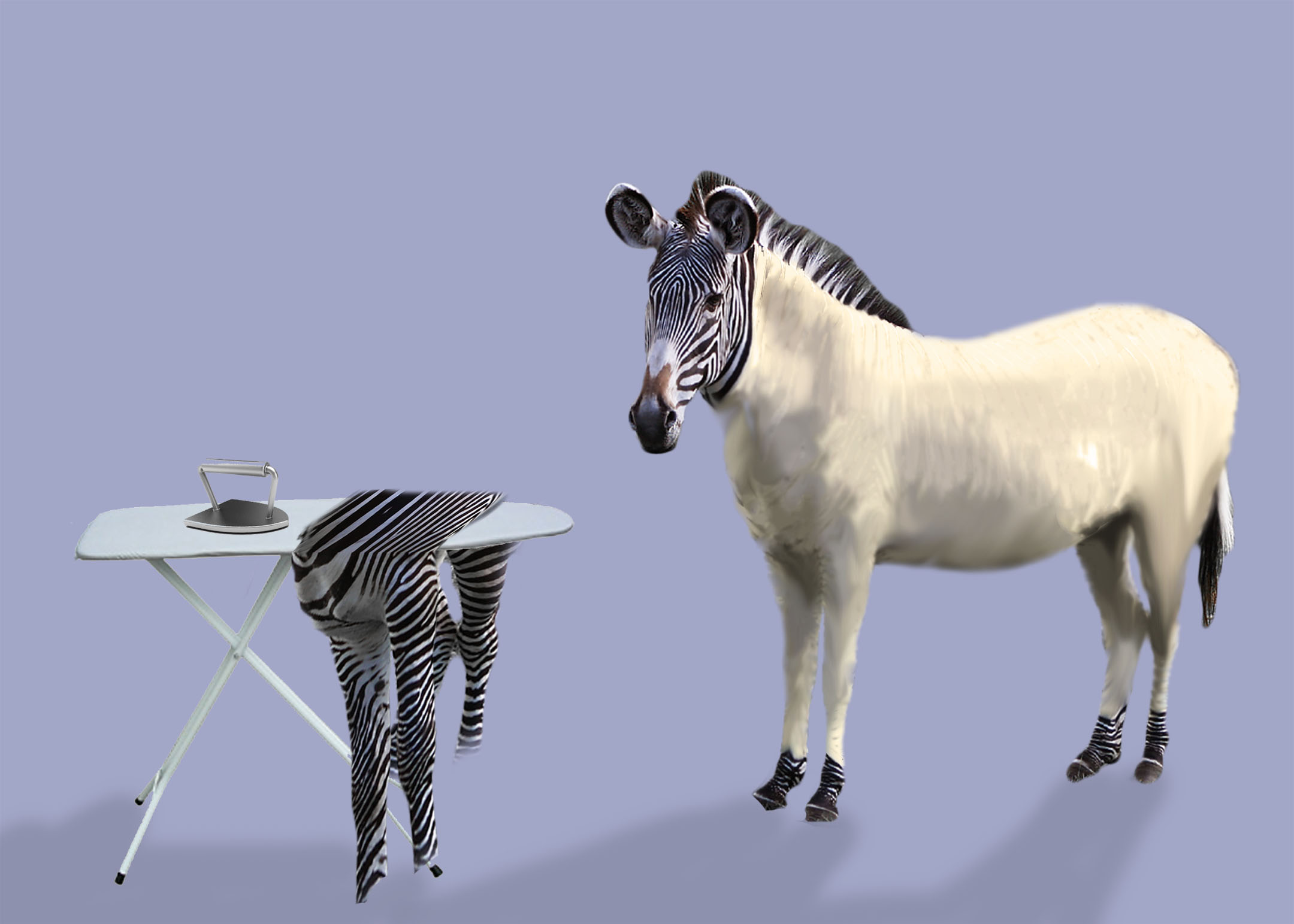undressed-zebra-by-sophia-brick