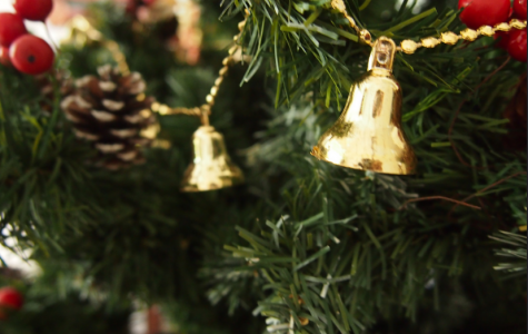 Picking your perfect tree