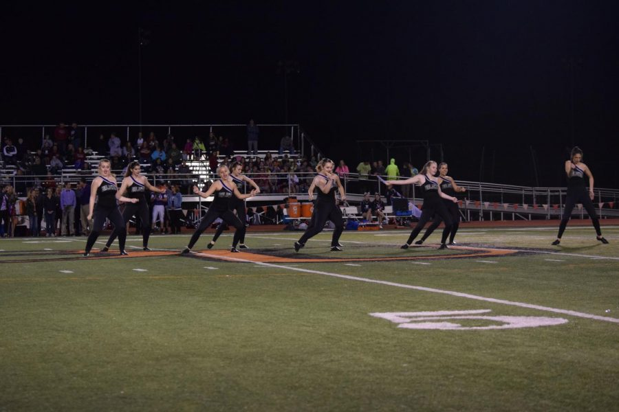 The+dance+team+performed+during+halftime+at+the+recent+Homecoming+game.