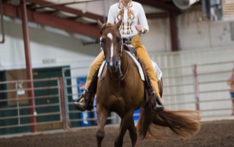 Horse shows keep BHS freshman busy