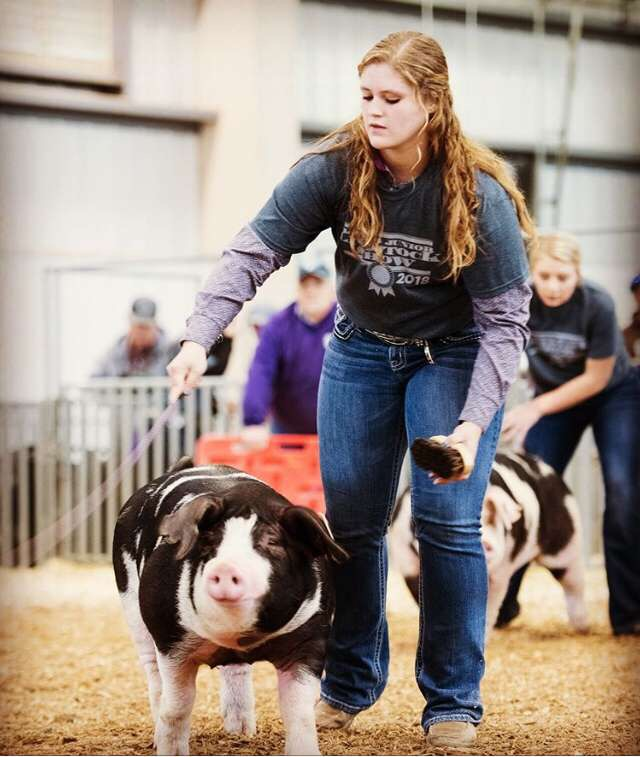 Riley Coates showing her pig.