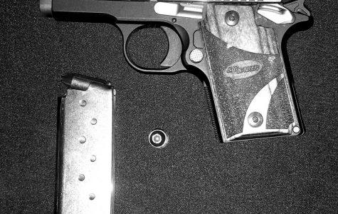 Gun control: an umbrella term