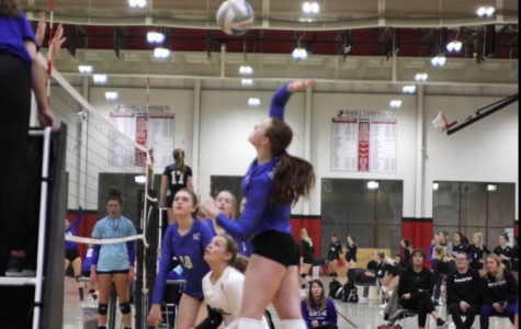 Galvan excelling on volleyball court